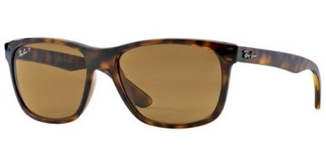 Ray-ban RB4181 710/83 Light Havana/brown