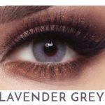 Bella Elite - Lavender Grey - 1 box 2 lenses