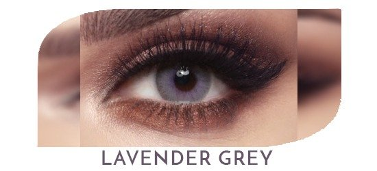 Bella Elite - Lavender Grey - 1 box 2 lenses
