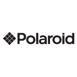 Polaroid sunglasses online in dubai