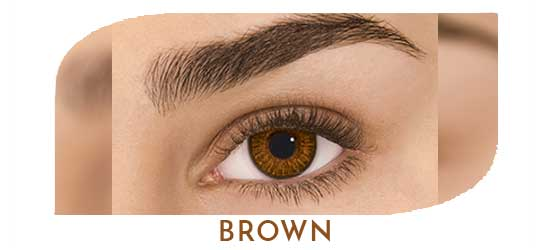 freshlook_colorblends_contact_lenses_dubai_brown